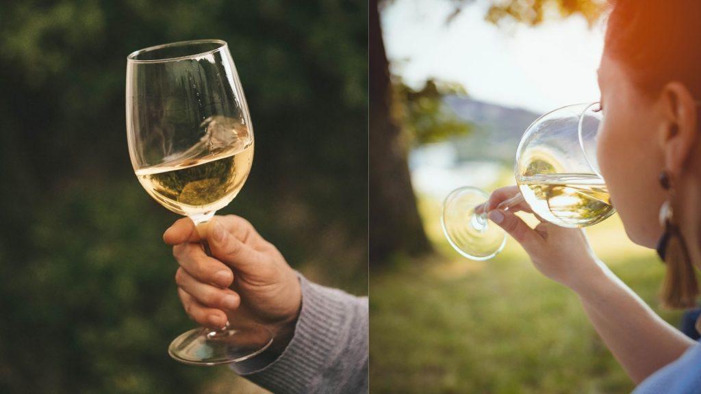 types of dry white wines